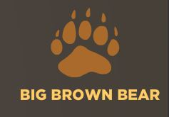 For Students / Big Brown Bear Typing Program